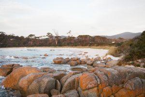 Bell tent adventure Explore Tasmania