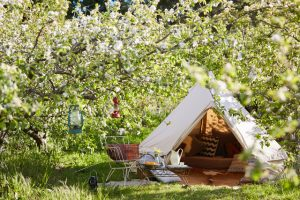 Bell tent, 3m diameter Bell Tent, Sibley Tent, Canvas tent, Glamping Tent, Practicality, Camping, camp