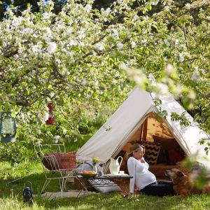 3m bell tent, camping tent, sibley tent, canvas tent, camping tent, festival tent