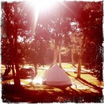 4.5m Protech Bell Tent with mosquito mesh wall